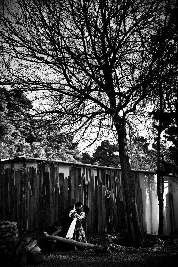 Wedding Dreams by Amirazariphotography - 013