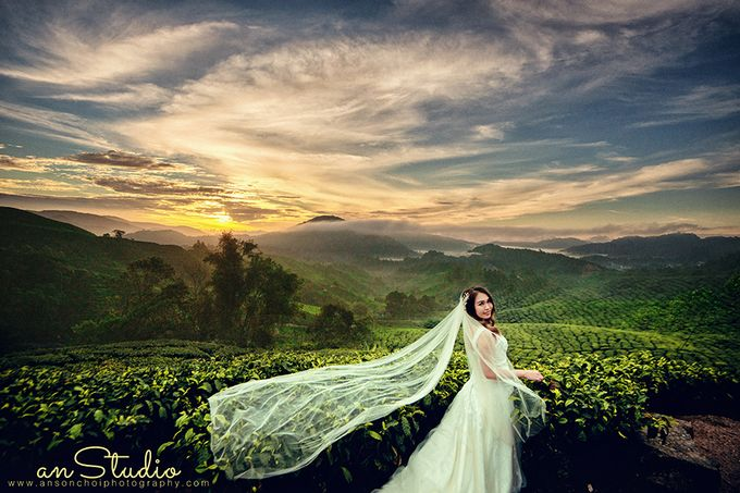 Destination Wedding Photography by ABSOLUTE BRIDE - 001