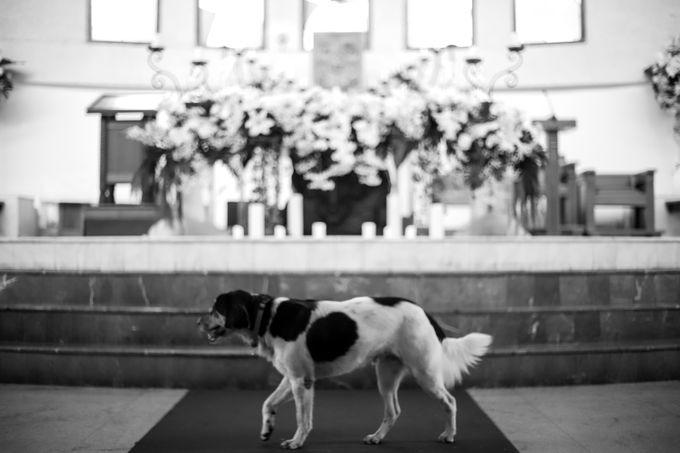 Anggrit & Yoga Wedding at Gereja ST. Matias by Mirza Photography - 019