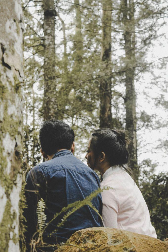 FOREST LOVE by Vintageopera Slashwedding - 005