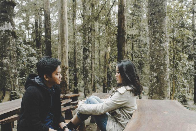 FOREST LOVE by Vintageopera Slashwedding - 012