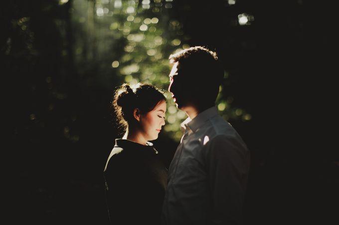 Dan & Nicole by Lights Journal - 007