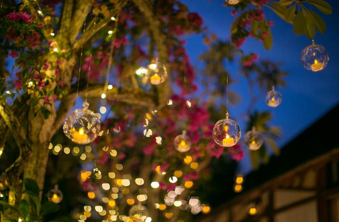 Let's Candles Light Up The Room~ by Rosebarrel  - 011