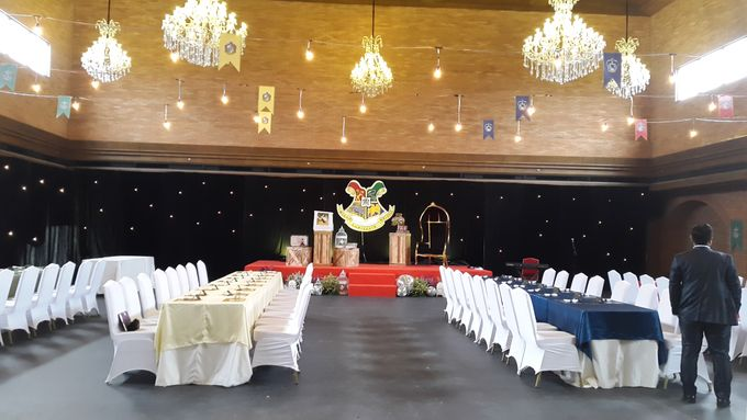 Harry Potter Theme For 18th Birthday by Evlin Decoration - 001