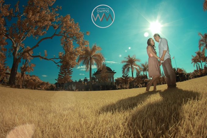 ENGAGEMENT / POSTWEDD / PREWEDD by pictures by OWMO - 014