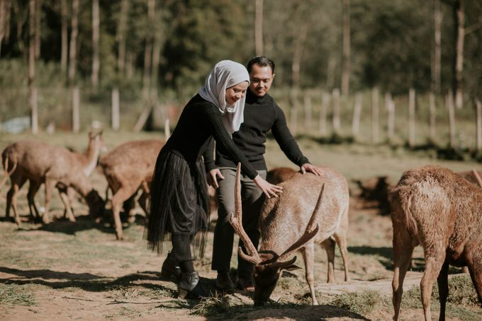 prewedding wibi dan aisyah by akar photography - 002