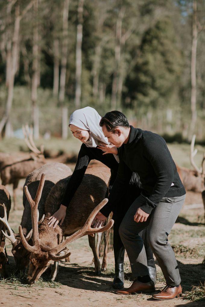 prewedding wibi dan aisyah by akar photography - 003