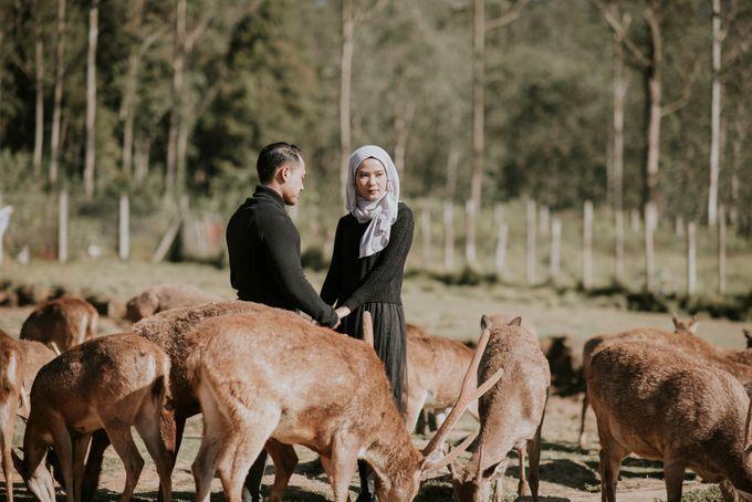 prewedding wibi dan aisyah by akar photography - 004