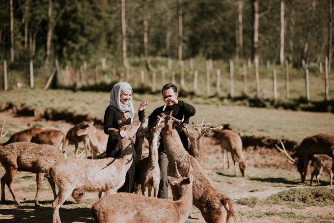 prewedding wibi dan aisyah by akar photography - 005