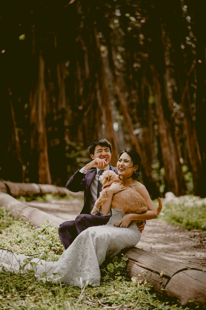 San Francisco Cine + Pho by AllureWeddings by ALLUREWEDDINGS - 003