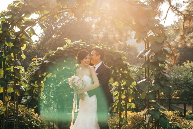 Christina dipaola wedding