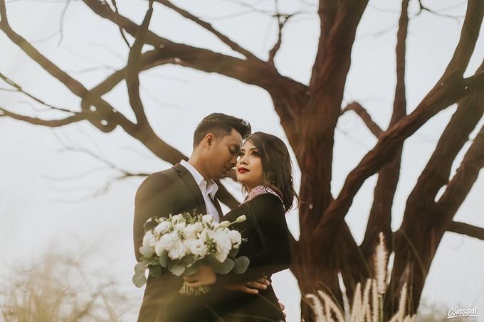 The Pre-wedding of Ameer and Nadira by Colossal Weddings - 010