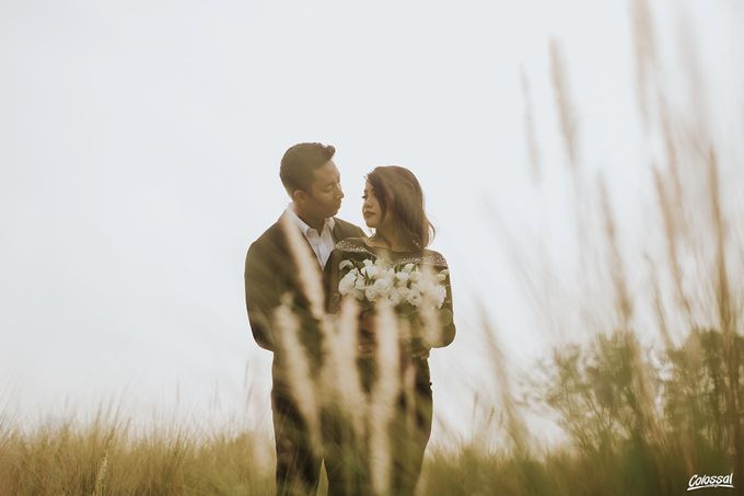 The Pre-wedding of Ameer and Nadira by Colossal Weddings - 007