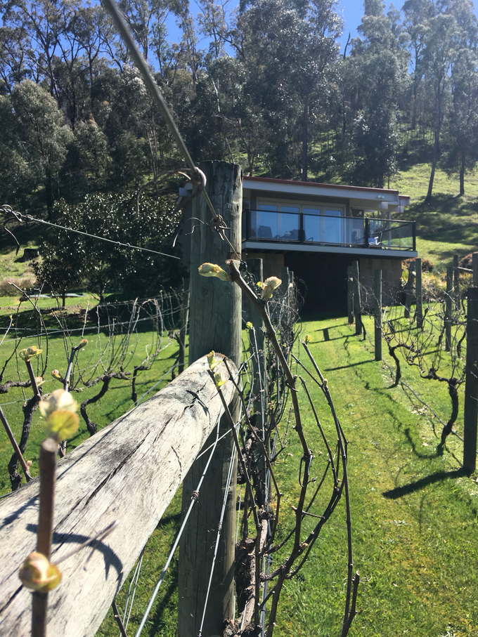 DIY Wedding Venue in the Yarra Valley by Araluen Boutique Accommodation - 001