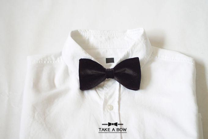 Pre-Tied Bow Tie by Take A Bow Tie - 005