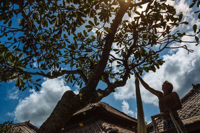 Danni and Jon | Bali wedding by Wainwright Weddings - 001