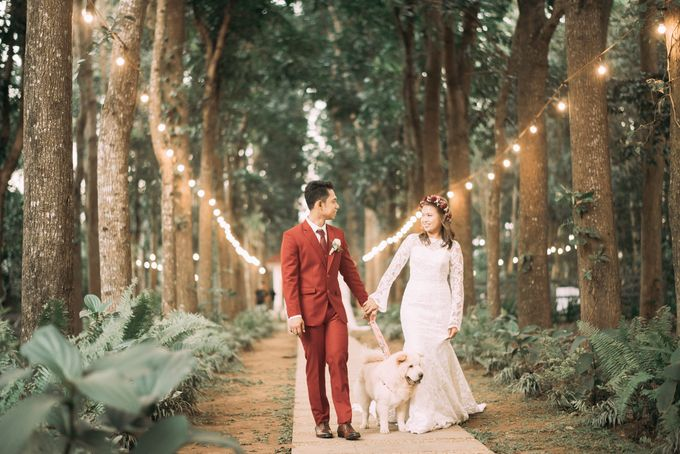 Barvie & Jeffrey Wedding Highlights by The Daydreamer Studios - 025