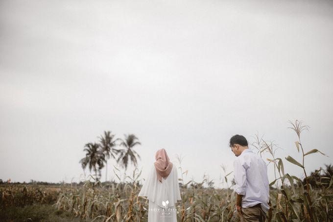 Asra by Indie Land - 009