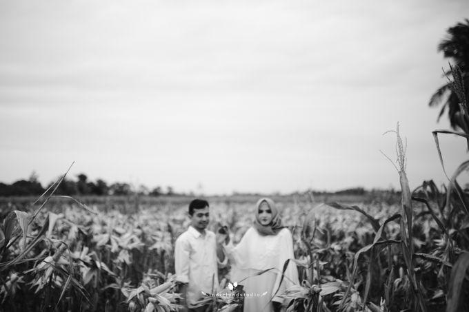 Asra by Indie Land - 028