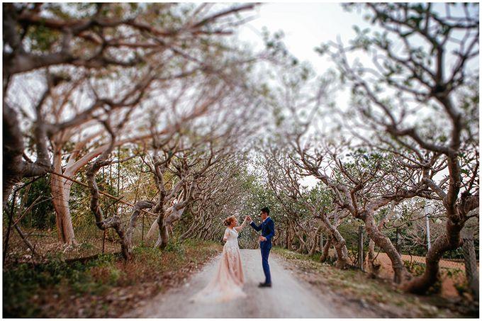 Gio and Erin Wedding by Gavino Studios - 003