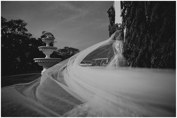 Gio and Erin Wedding by Gavino Studios - 015