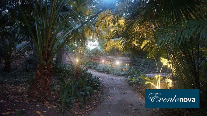 Wedding in Jardin Botanico by Eventonova - 001