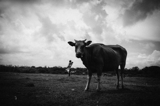 Cerita Dea Rifky by Kalarasa Imagine - 022