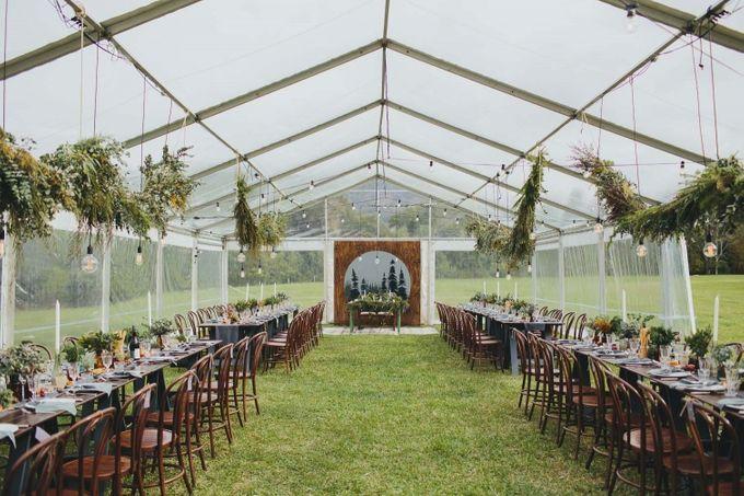 Brandi & Jariths Wedding by Shane Shepherd Photography - 006