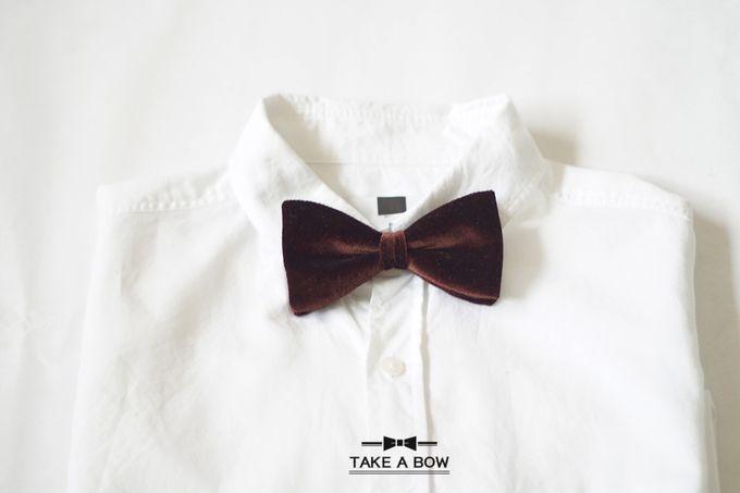 Pre-Tied Bow Tie by Take A Bow Tie - 006
