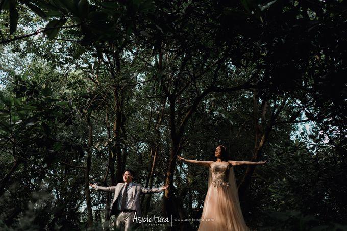 Prewedding Bryan & Sisca by ASPICTURA - 009