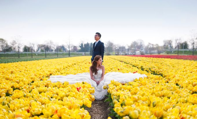 Netherlands Cine + Pho by AllureWeddings by ALLUREWEDDINGS - 002