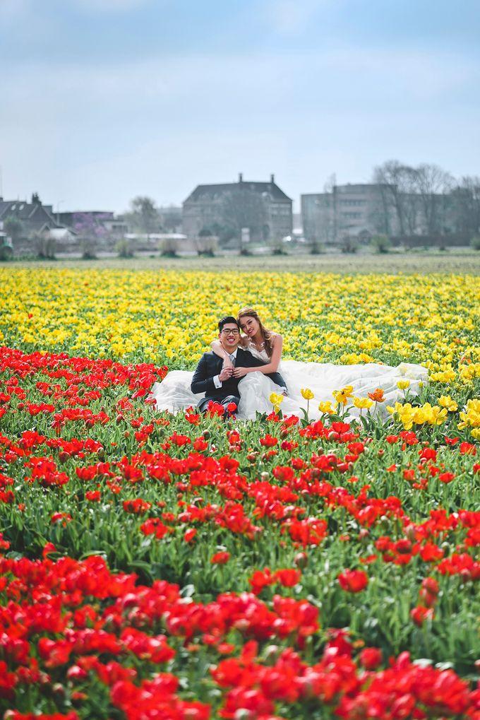 Netherlands Cine + Pho by AllureWeddings by ALLUREWEDDINGS - 009