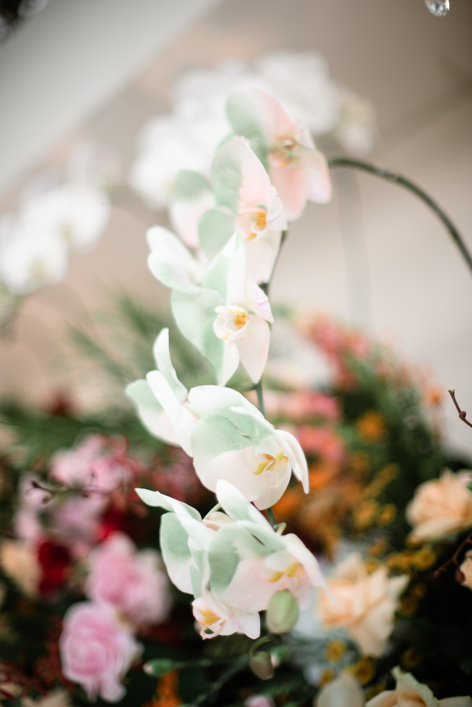 The Wedding of Lisa & Ghuzan by Cassia Decoration - 005