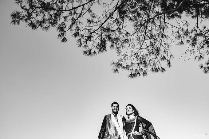 Destination Wedding- Big fat Indian by ColorBlast Weddings - 015