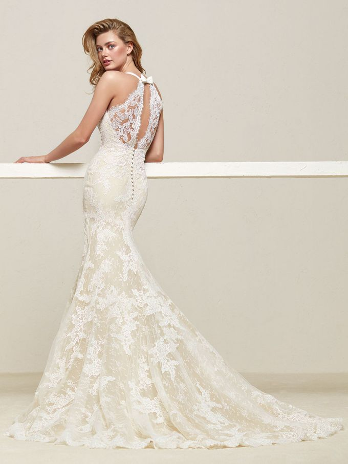 Pronovias by DESIGNER BRIDAL ROOM - 035