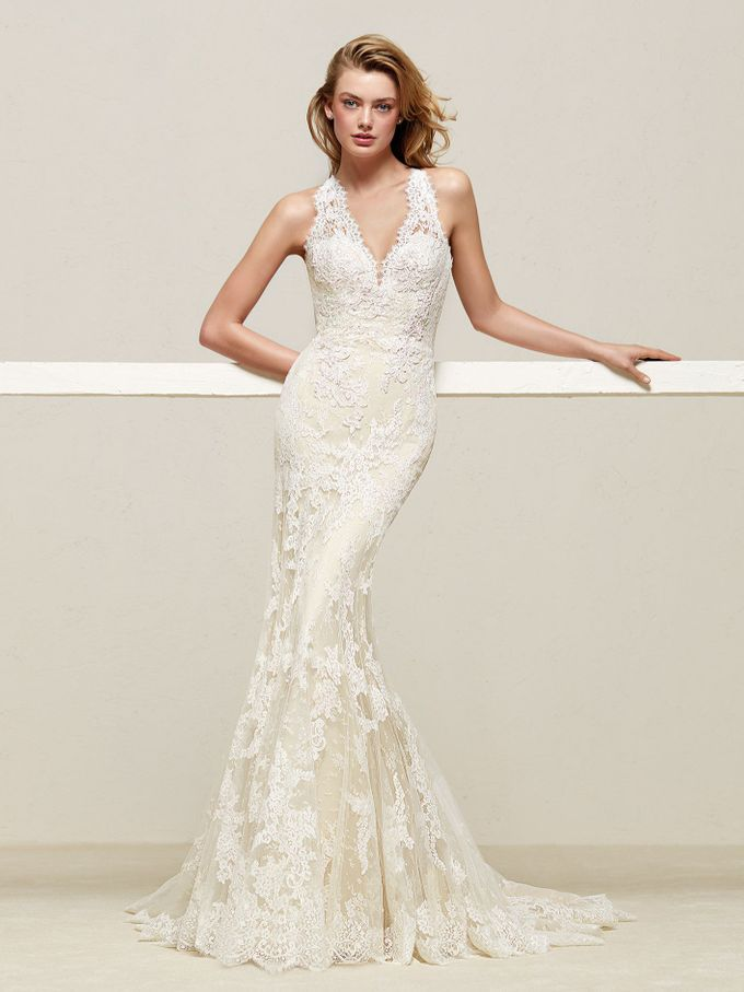 Pronovias by DESIGNER BRIDAL ROOM - 034
