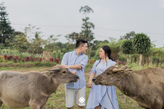 Davine Kartini Pre-Wedding | Countryside by Ducosky - 004