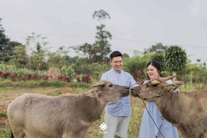 Davine Kartini Pre-Wedding | Countryside by Ducosky - 005