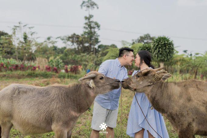 Davine Kartini Pre-Wedding | Countryside by Ducosky - 006