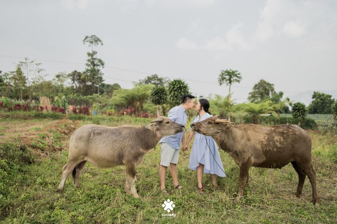 Davine Kartini Pre-Wedding | Countryside by Ducosky - 008