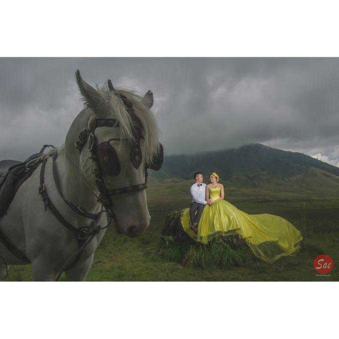 Prewedding Bromo by SAE Photoworks - 005