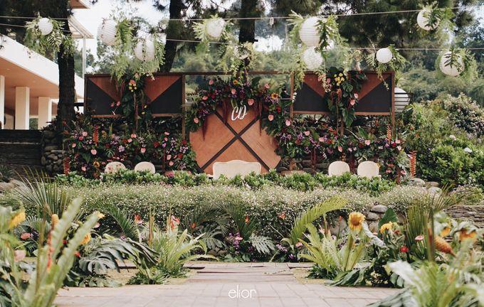 The Vibrant Tropical Wedding of Christa & Dede by Elior Design - 006