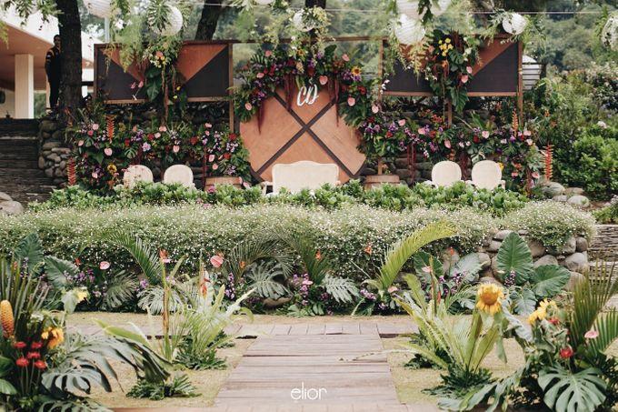 The Vibrant Tropical Wedding of Christa & Dede by Elior Design - 009