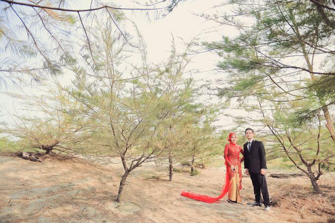 Romance Between Desert and Pine by ridzkysetiaji photo - 004