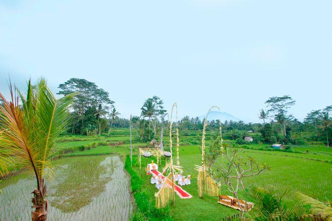 Ricefield Wedding at De Klumpu Bali by De Umah Bali - 005