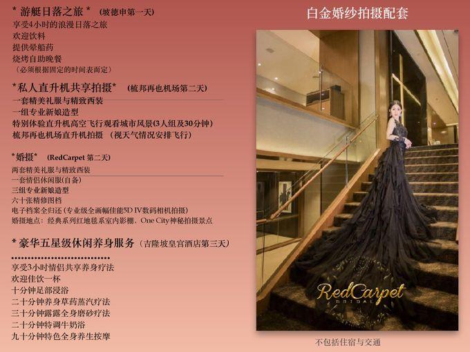 Platinum Pre wedding by RedCarpet Bridal Artistry - 002