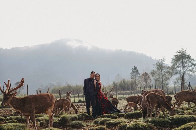 Prewedding Grisela & Hendra by ALLANO PHOTOGRAPHY - 005