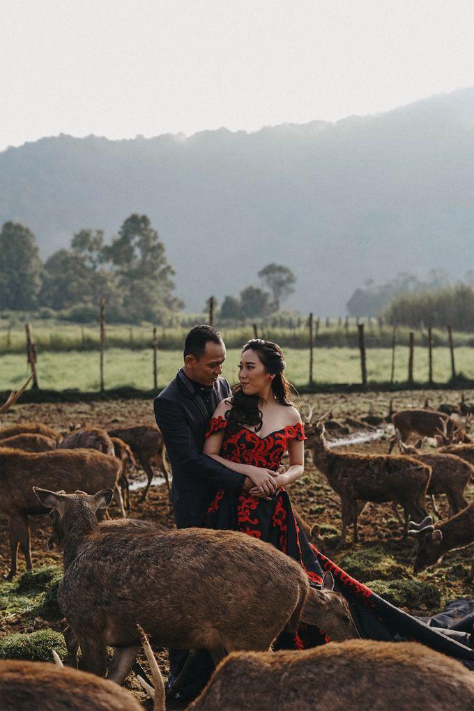 Prewedding Grisela & Hendra by ALLANO PHOTOGRAPHY - 006