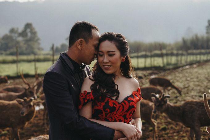 Prewedding Grisela & Hendra by ALLANO PHOTOGRAPHY - 007