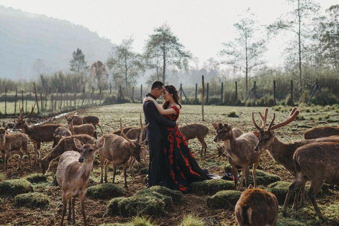 Prewedding Grisela & Hendra by ALLANO PHOTOGRAPHY - 008